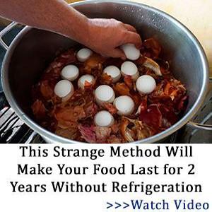 survival food storage tips